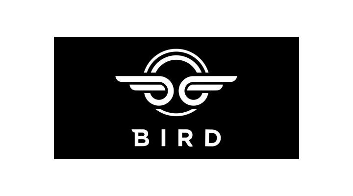 SHA-Portfolio-Bird.png