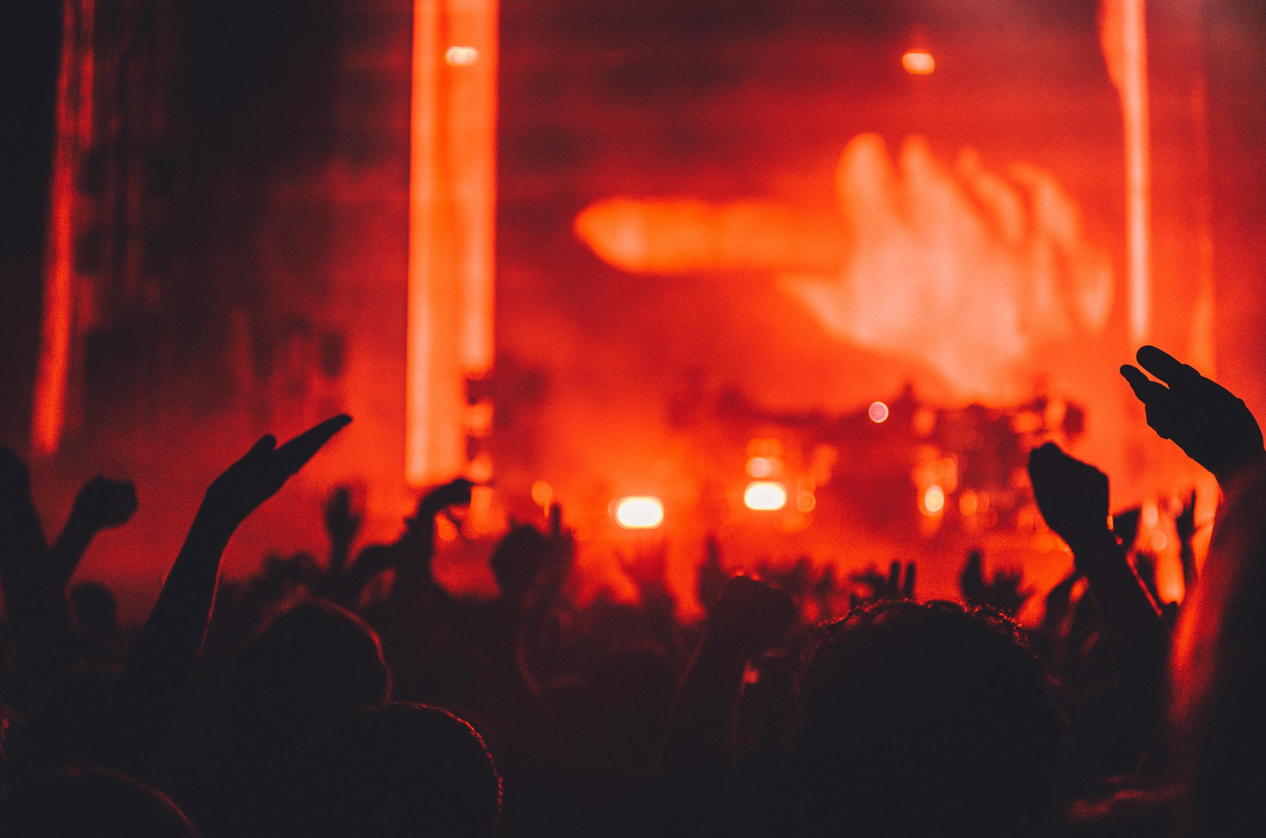 ConcertFans.jpg