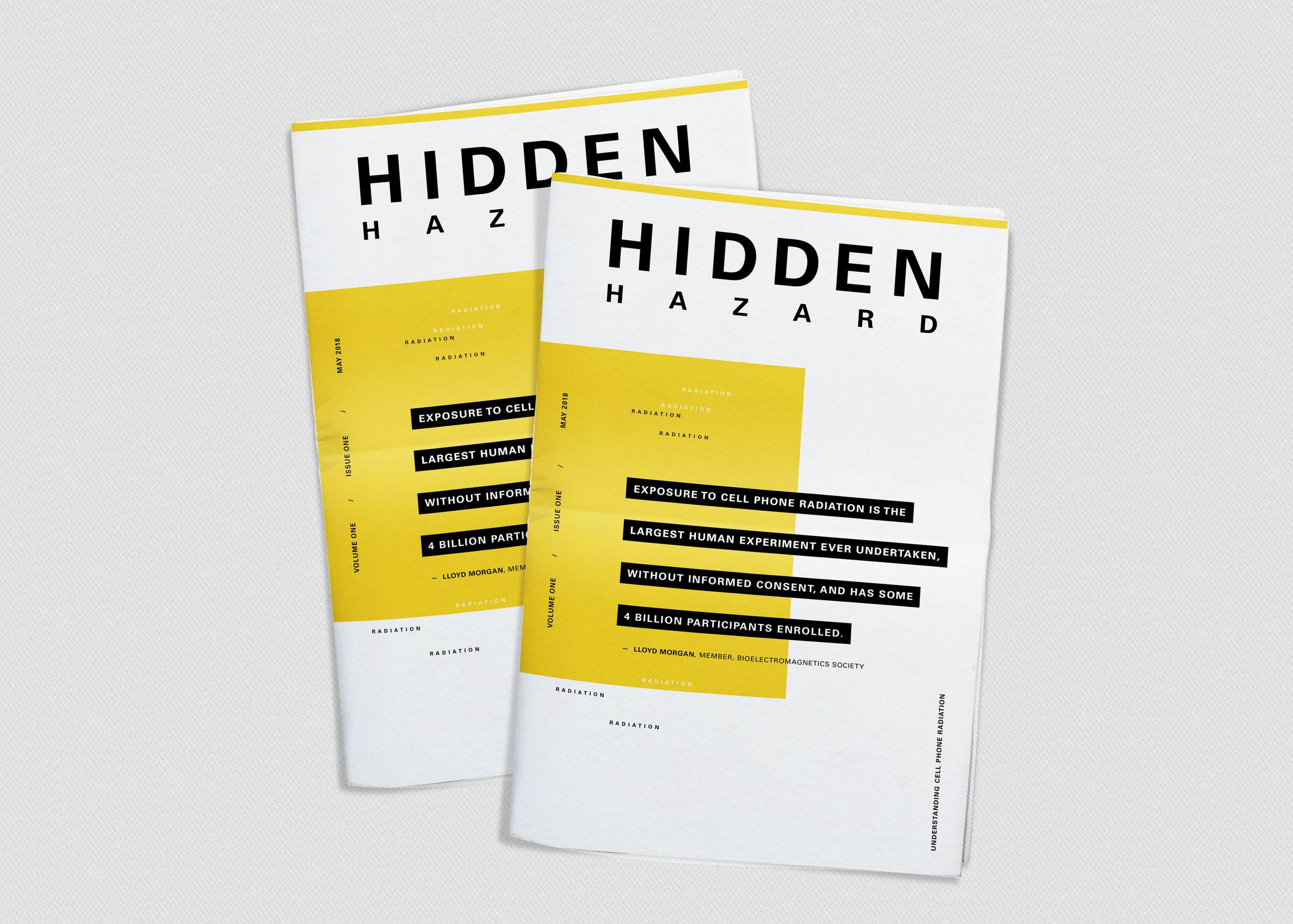 Hidden Hazard - Thesis