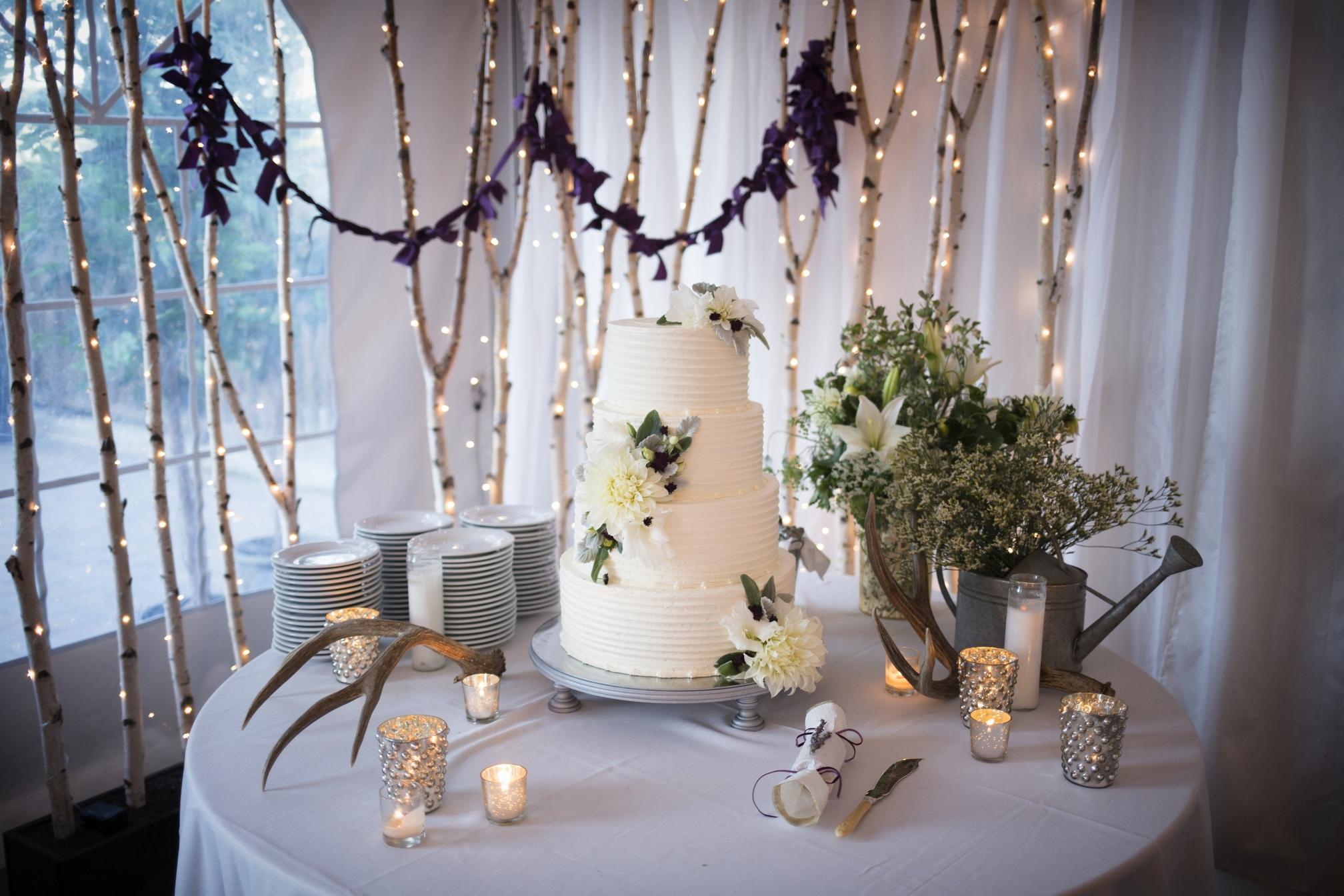 Millett Wedding Jackson Hole 2104_0415A.JPG