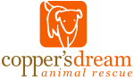 coppersdream_logo_vertical_trans.png
