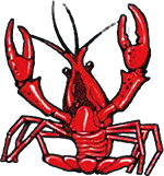 MA crawfish.png