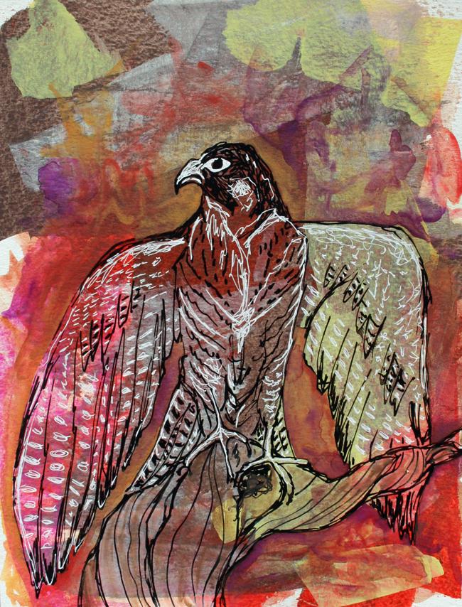 Falcon. Mixed-media on paper.
