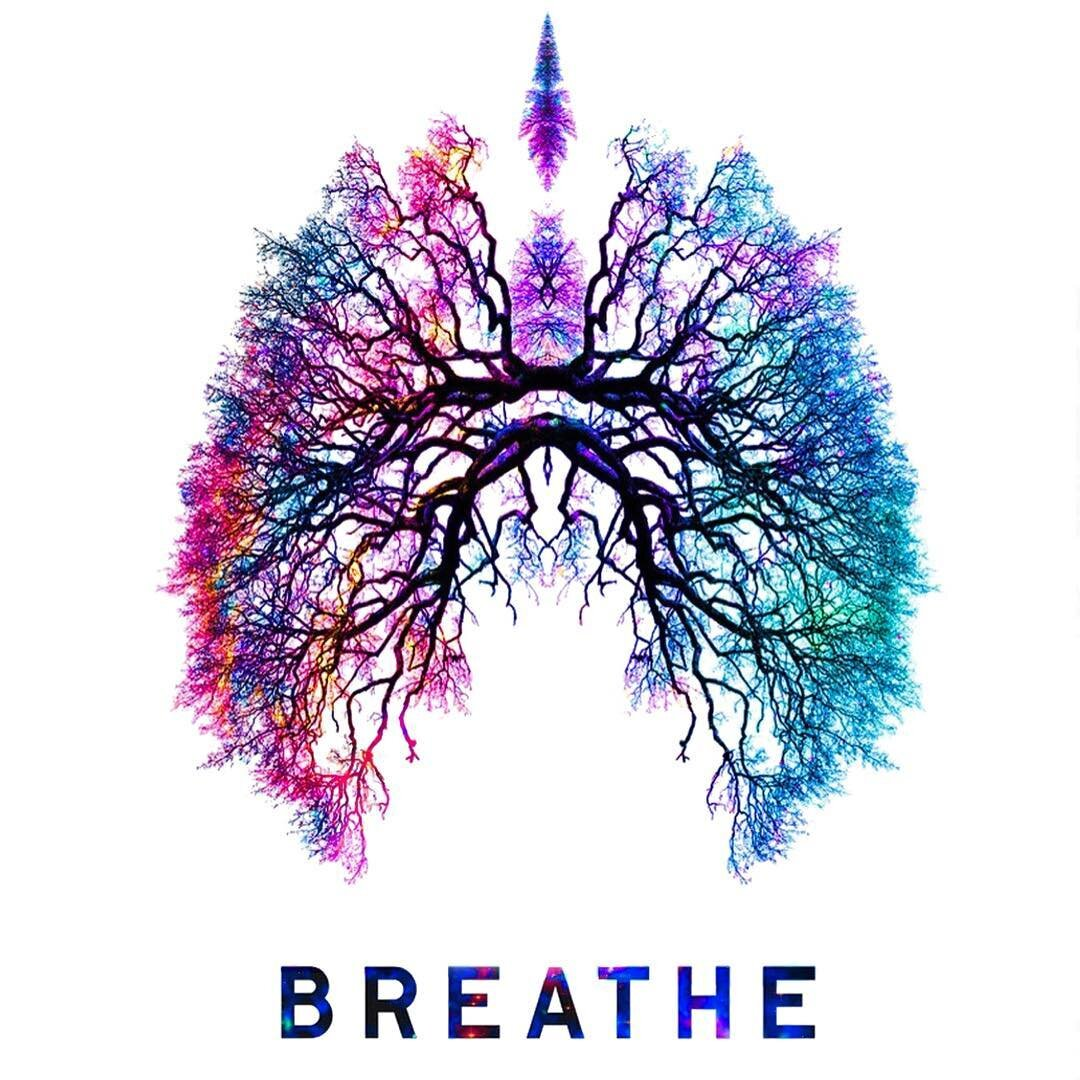 "An illustration of human lungs created in the shape of tree roots and branches with the word, ""breathe"" below it."