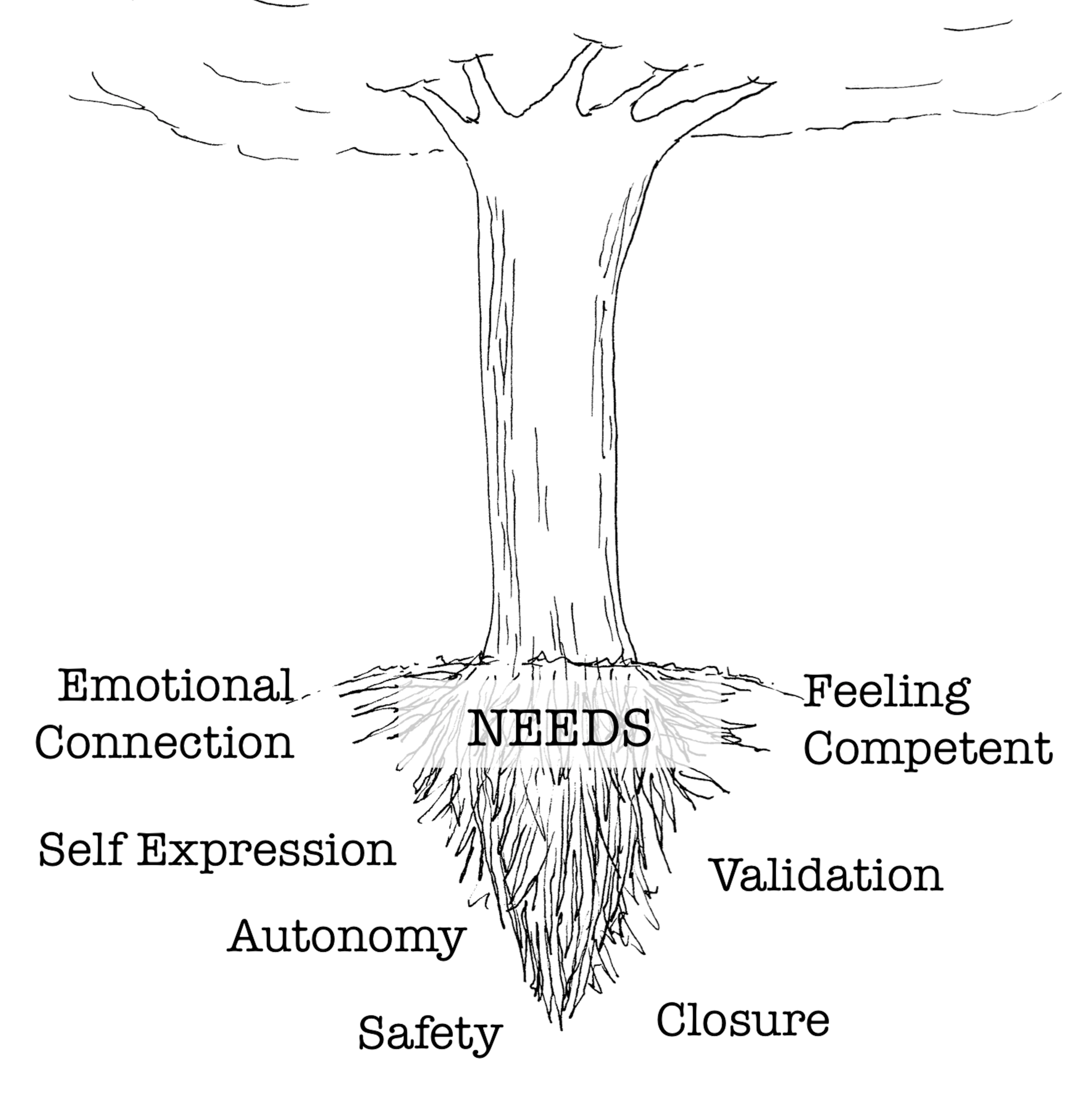 Here are some of our basic emotional needs. If our needs are not met or when several needs collide and conflict with one another, our emotions start to go south.