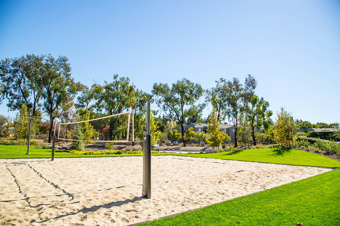 Volleyball Court - The sand Volleyball Court is the perfect way to blow off some steam and get some laughter in.Varies