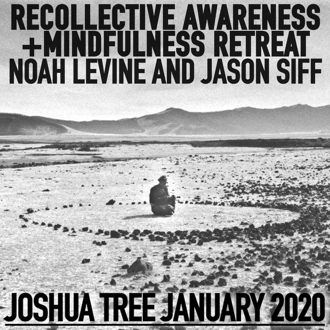 joshuatree-levine:siff-january 2019-instagram.jpg