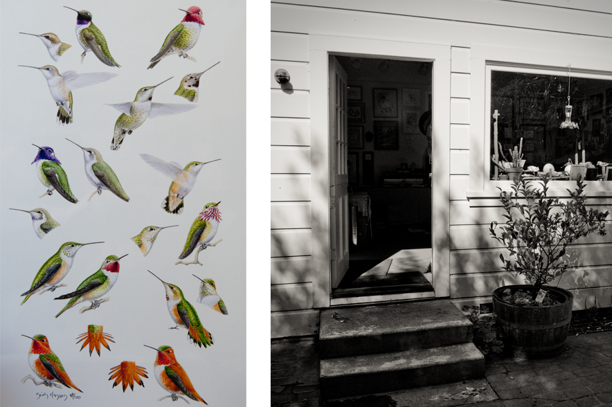 Keith's drawings of hummingbirds (left) and studio entrance (right)