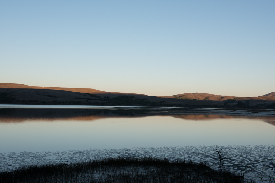 Exposed Mudflats at Low Tide, Tomales Bay