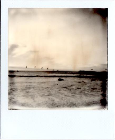 Wildcat Beach