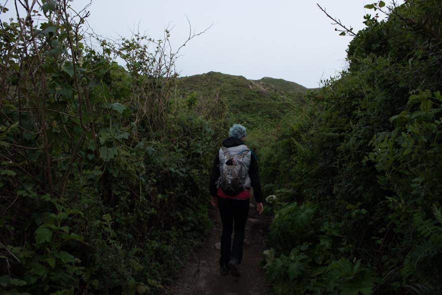 Coast Trail Detour