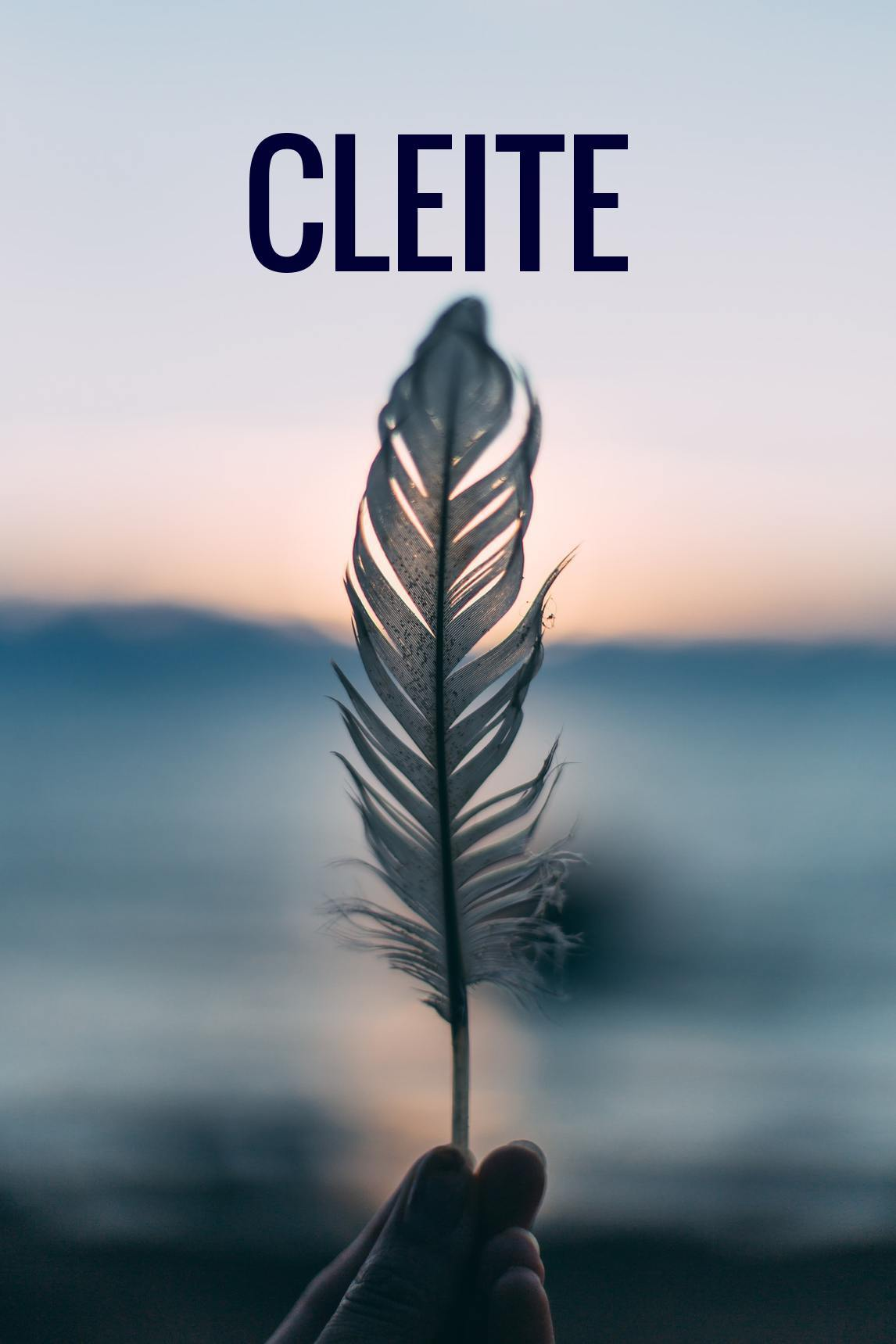 We are delighted to announce that tickets for Cleite are now on sale from the Town Hall Theatre.  - Cleite sold out at this year's Galway Theatre Festival and was well received by both the public and reviewers. We are delighted to welcome back Philippa Hambly and Caitlín Ní Chualáin to the company. Tickets here. Reviews here and here.