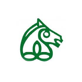 7 Irish Sports Horse.png