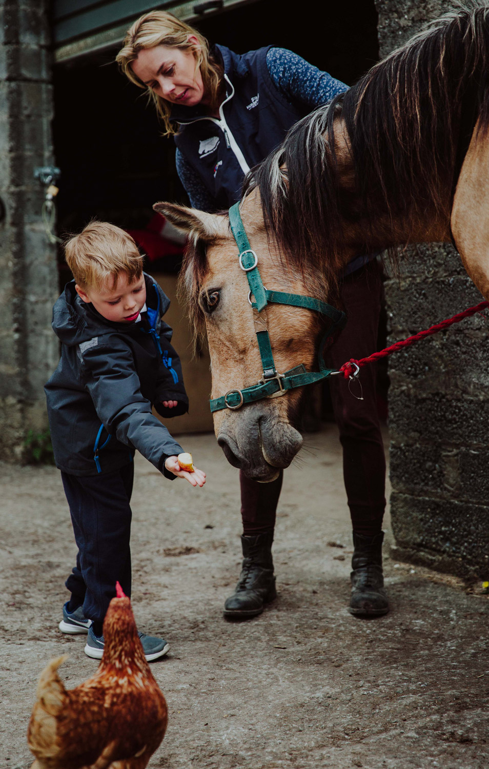 Errislannan-Therapeutic-Riding-D.jpg