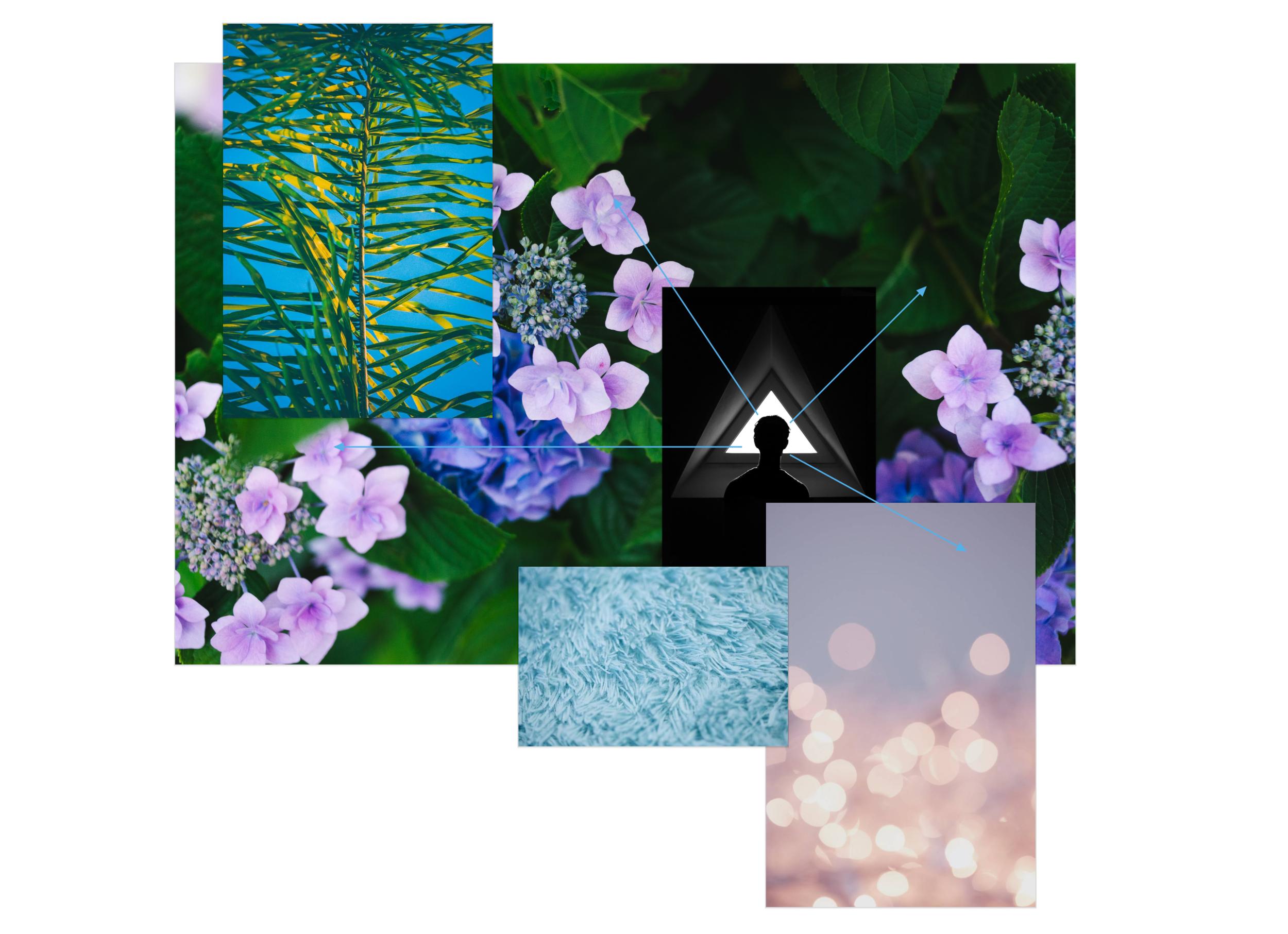 export-flowerscape-1GlsDr.png
