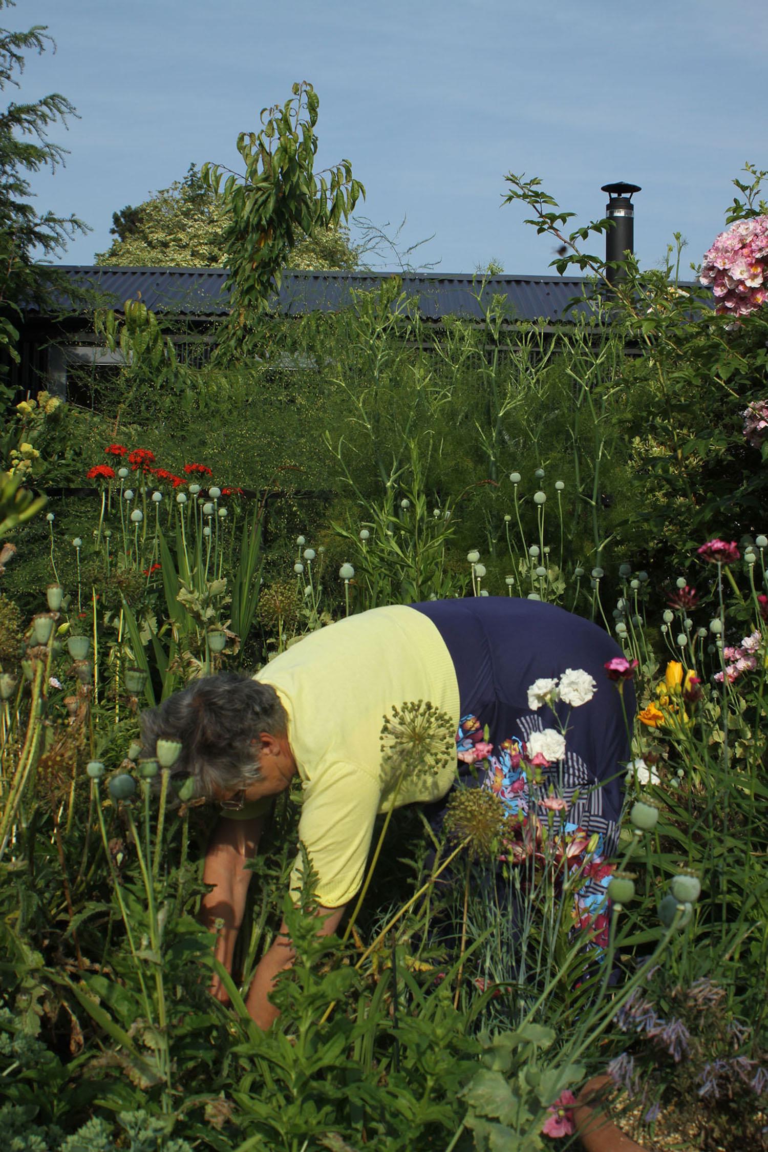 gardenroomgardener.jpeg