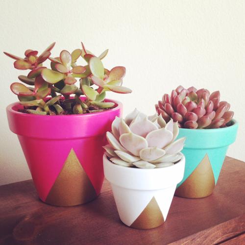DIY Painted Succulent Pots