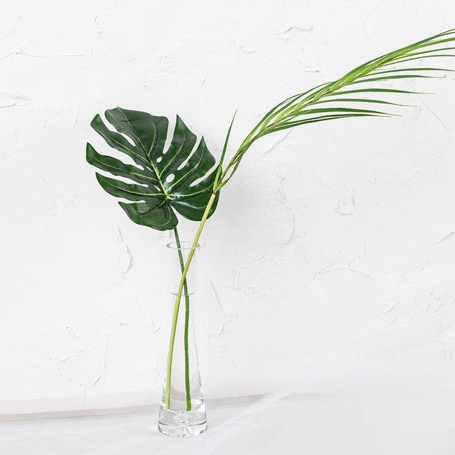 Monstera Palm Leaf