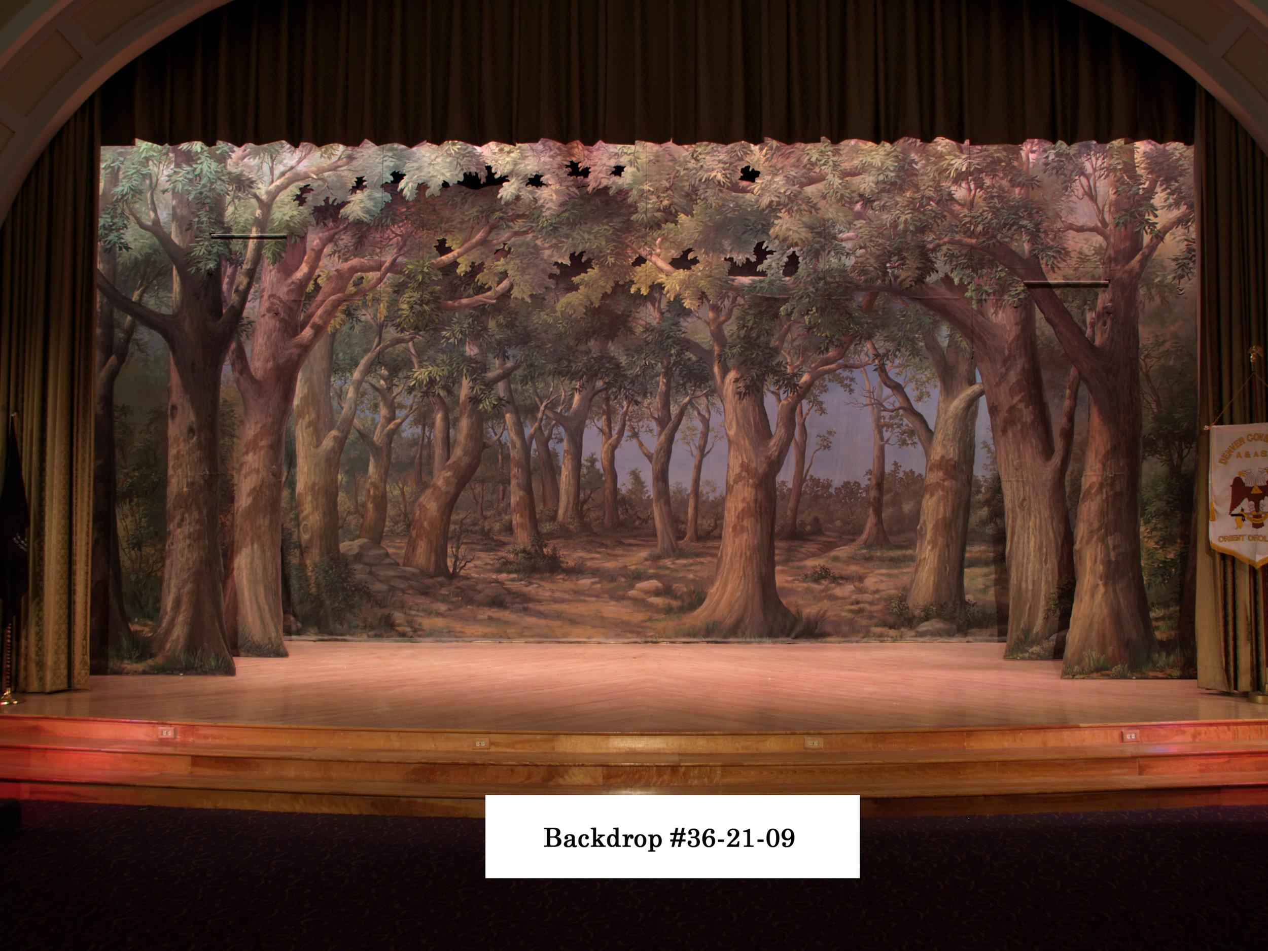 backdrop_36-21-09.jpg