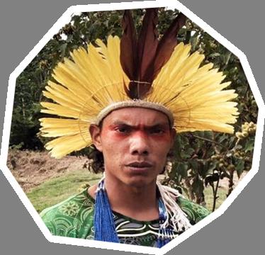rasu yawanawa.png