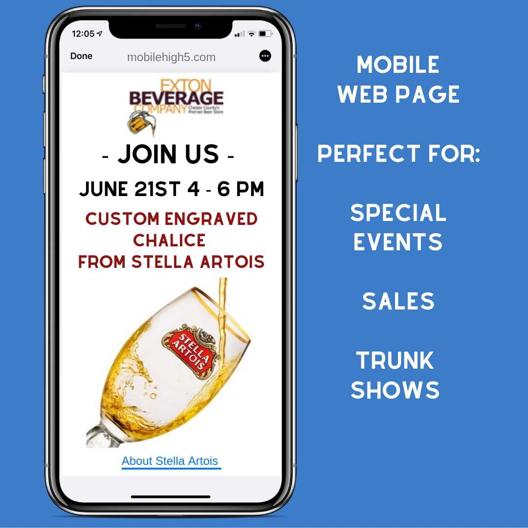 mobile web page-event-sms text-bulk sms-marketing-advertising-agency-mobile high 5.jpg