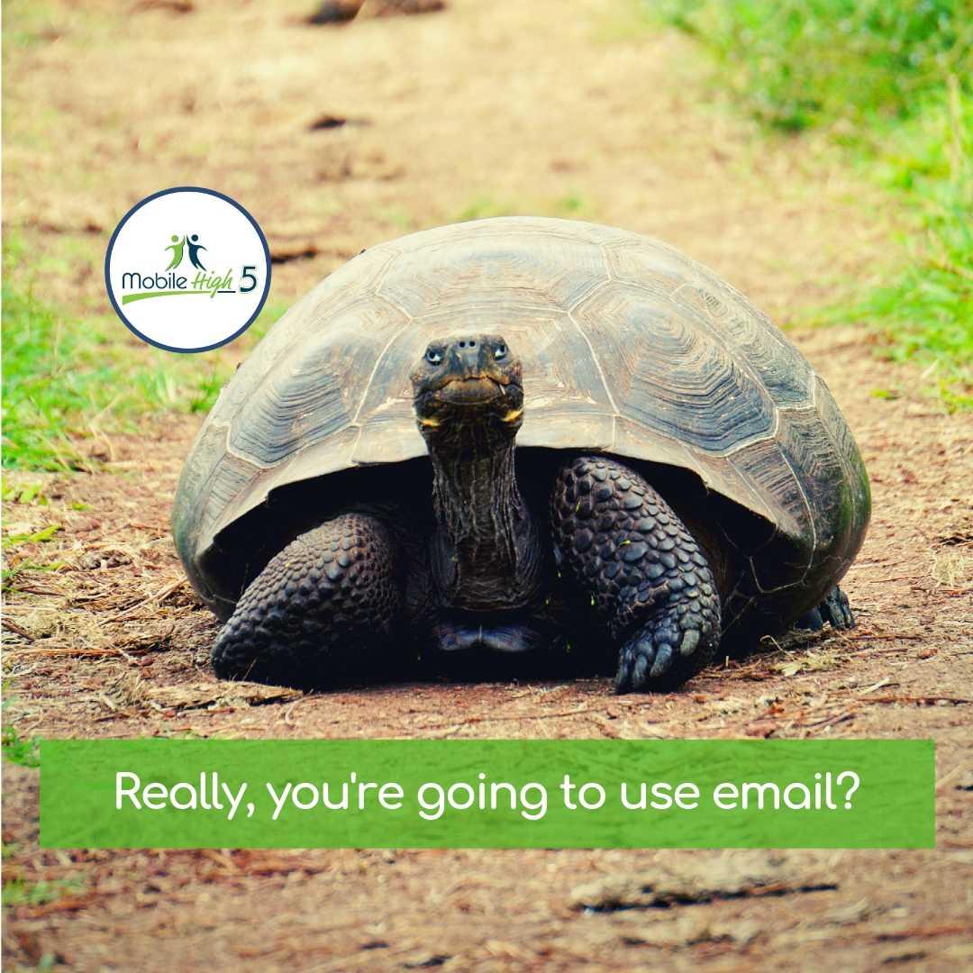 loyalty-marketing-sms text-sms advertising-email marketing alternative-philadelphia-mainline-advertising-mobile high 5.jpg