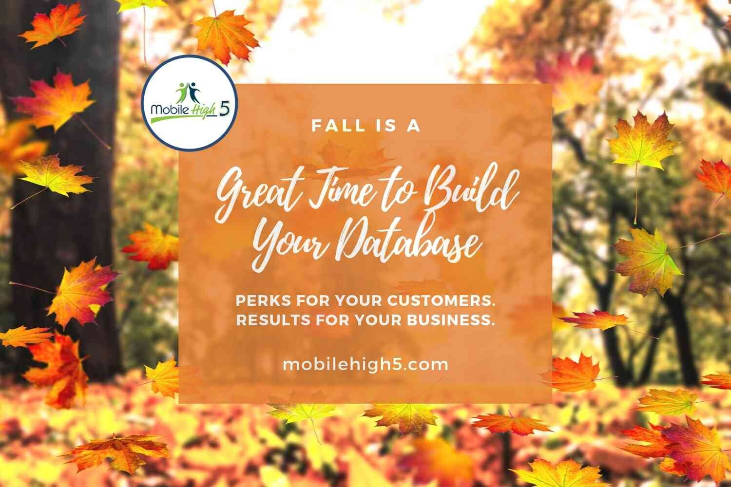 Fall is a perfect time to launch your loyalty program!
