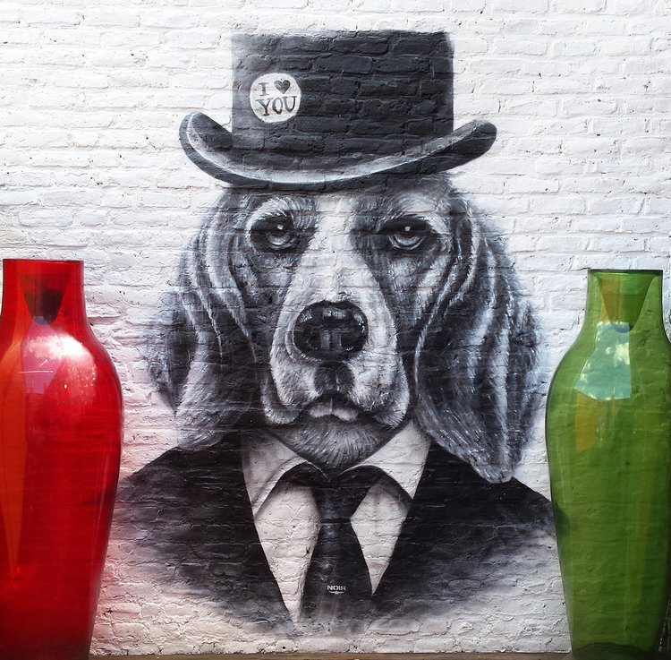 Projet Dog.jpg
