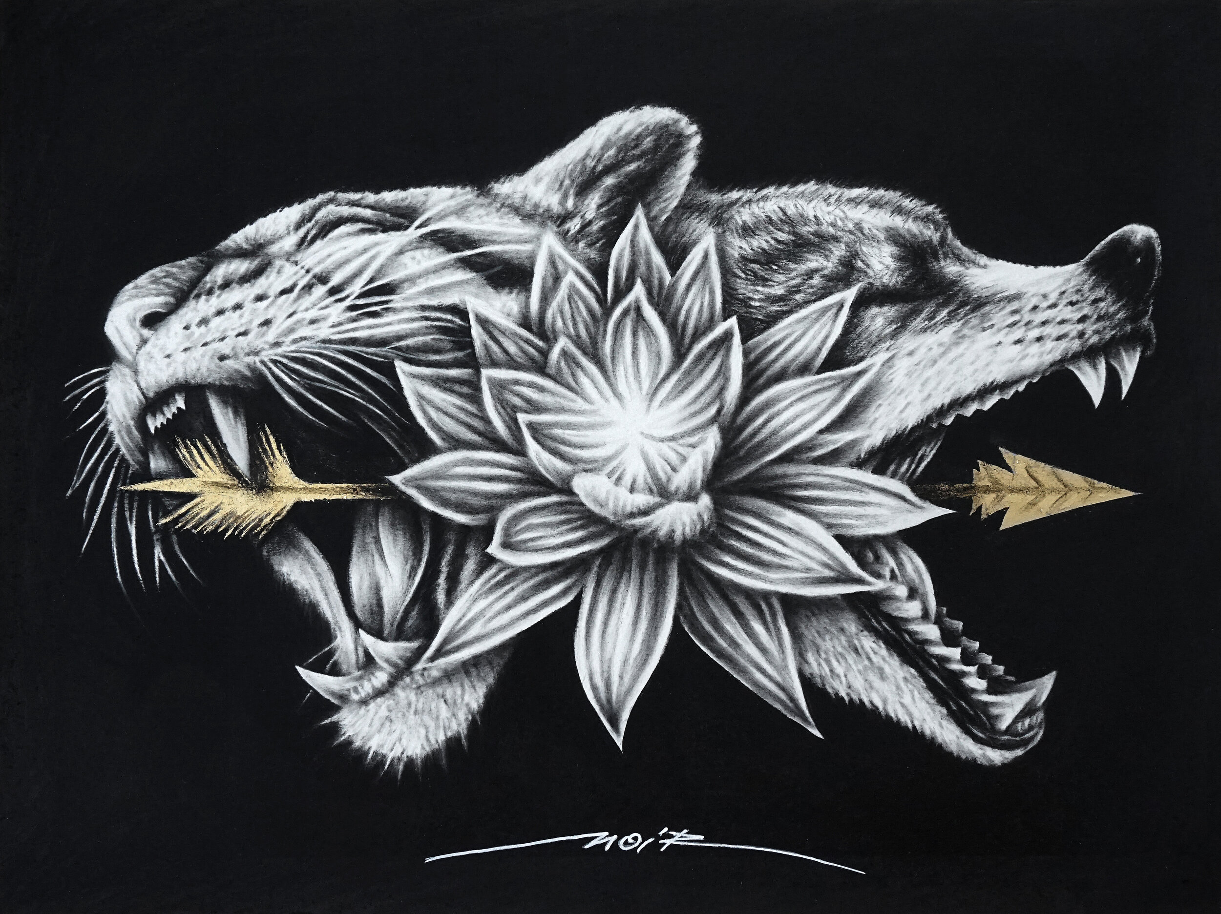 Lotus - 40x30cm - HD 2019.jpg