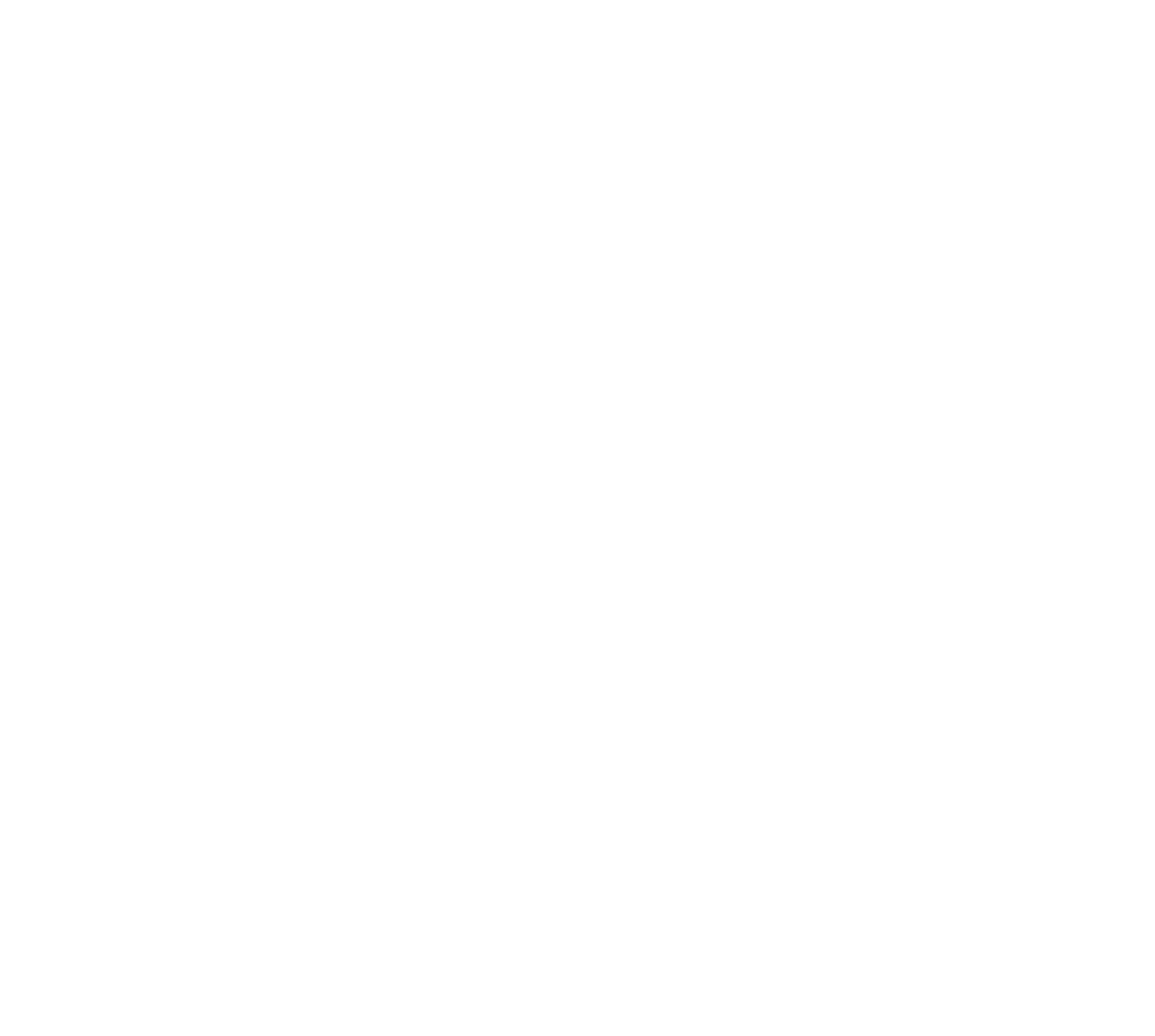 NSO-Logo-2019-02.png