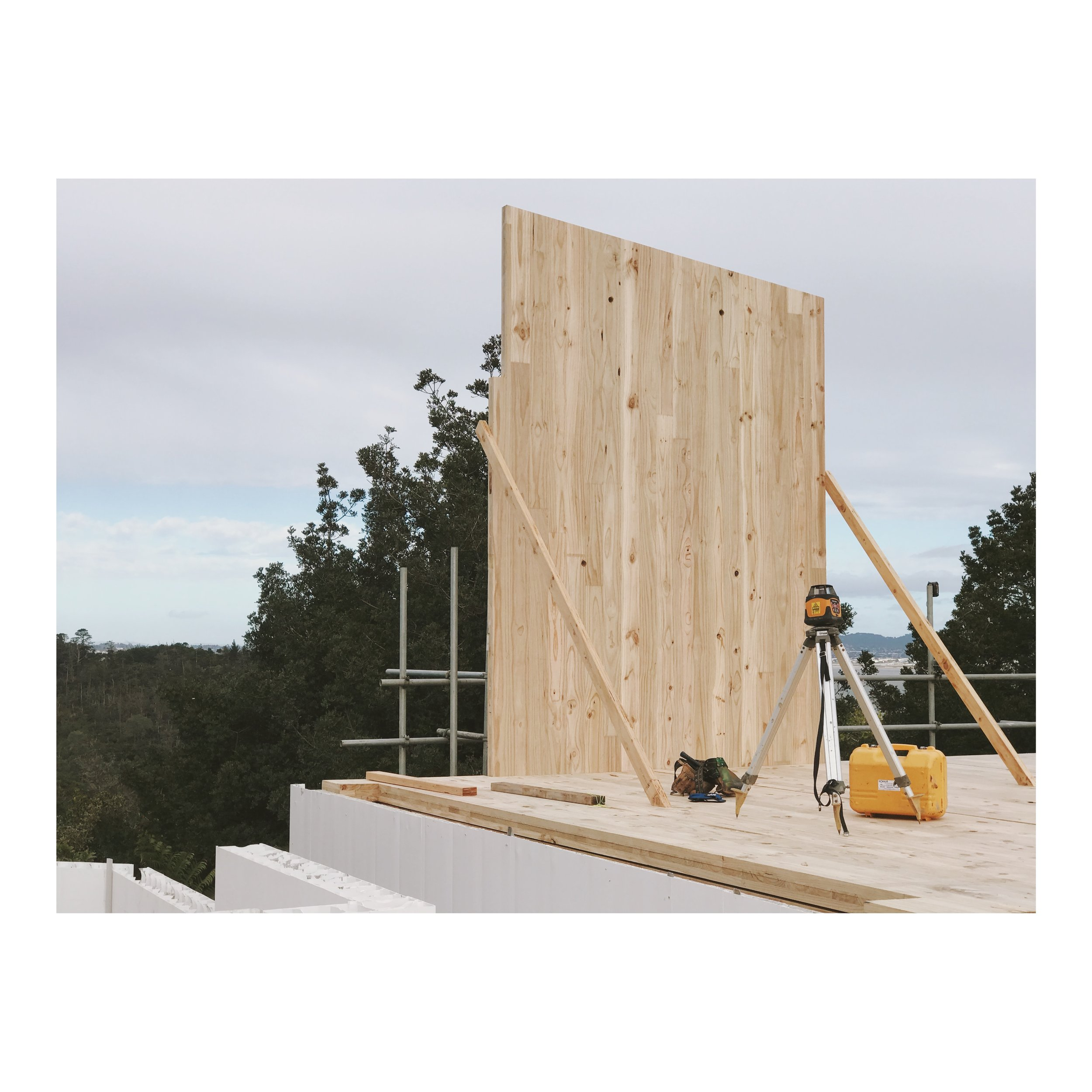 XLAM STRUCTURAL PANELS   Cross Laminated Timber is building sustainably. Building with XLam CLT panels is fast, safe, economical and good for the planet. Not to mention incredibly fast and labour saving to install.