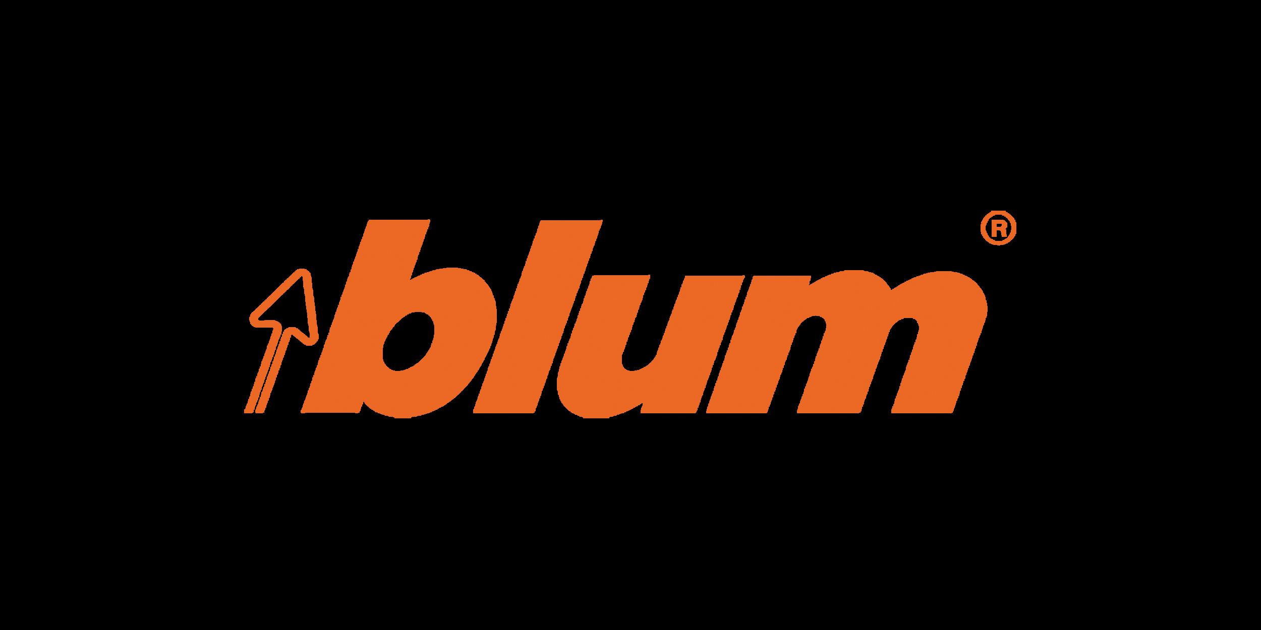 BLUM_RGB_300DPI_PNG_(orange_no_background).png