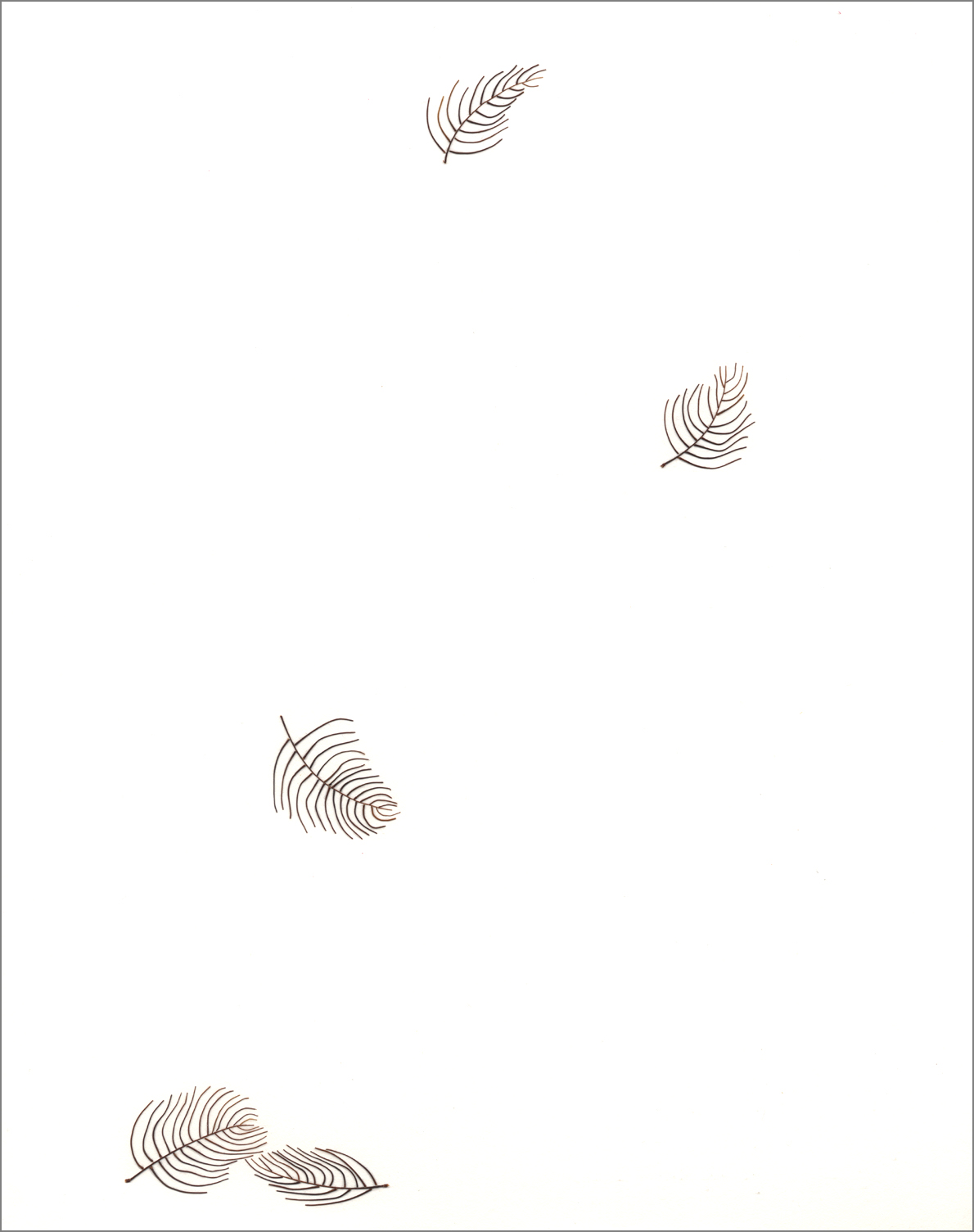 """FEATHERS, Cockroach antennae on paper, 14""""x11"""""""