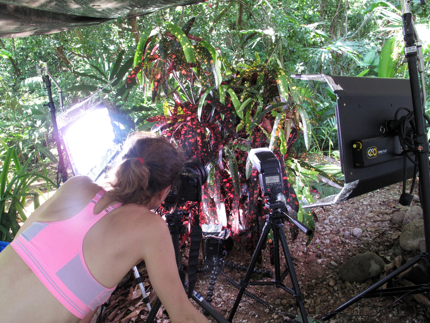 Shooting timelapse sequence in ANTWORKS video, Costa Rica
