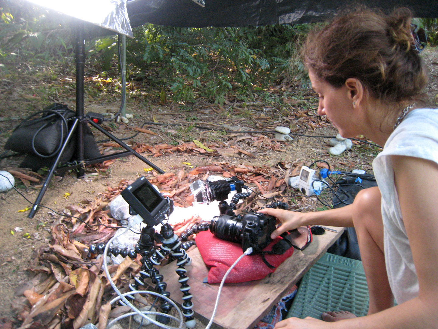 Filming ANTWORKS, Costa Rica