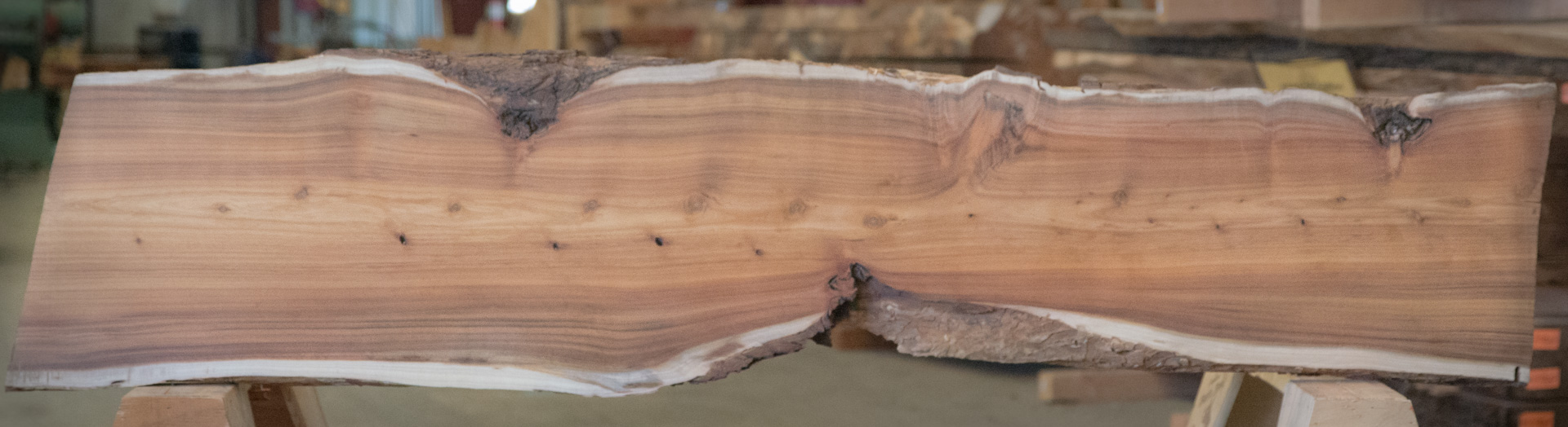 This is a test caption for a Sycamore slab