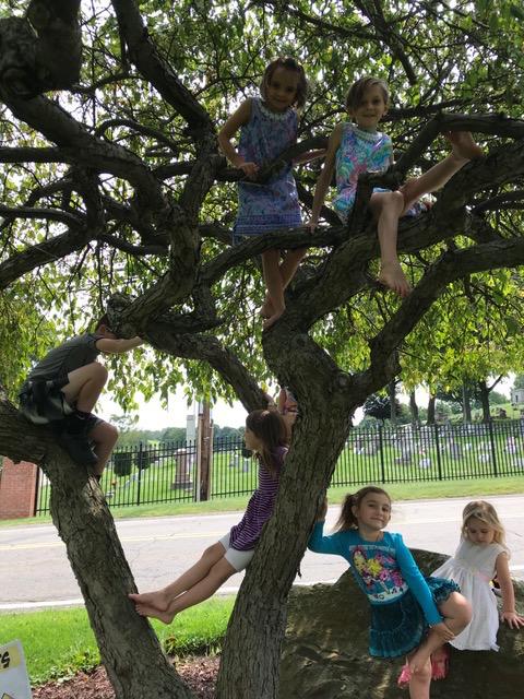 Plum tree kids.jpg