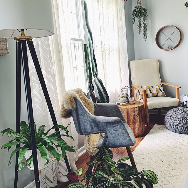 I (Charli) used to not have a single plant in my home😬, but over the years Natalie has seriously helped me discover the magic of plant power.🌿 We now use touches of greenery in every house we style! If you have a room that feels like it's missing something, take your wheel barrel to @lccactico & Kim will fix you right up. 🦚 Classy side note: Houseplants clean the air & improve concentration, memory, & productivity. #zing  #houseyourjungle 🐆 . . . . . #wildcatinterior #howyouhome #vignette #homestaging #howwedwell #vsco #interiorrewilding #interiorstylists #interiordecorating #greenery #apartmenttherapy #housetour #naturelovers #naturallight #earthinspiredhome #interiorstaging #interiorlovers #interior123 #nashvillestaging #interiordecorators #plantpower #realestate #nashvillerealty #housebeautiful #transformation #thedecorsocial #plantlife🌱