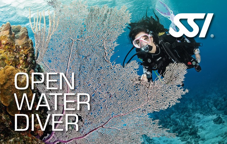 472523_Open Water Diver (Small).jpg