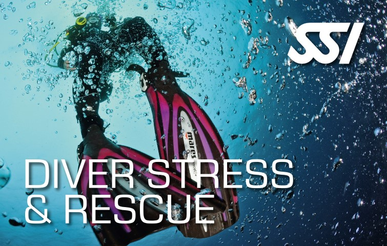472551_Diver Stress & Rescue (Small).jpg