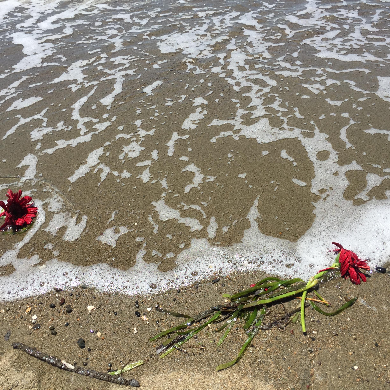 flower water 3.JPG