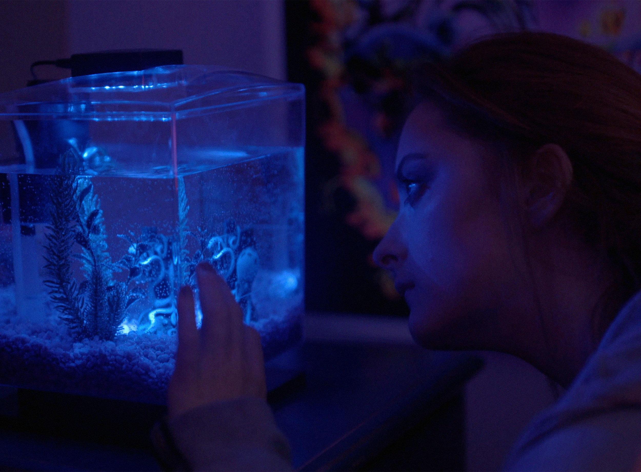 Riley Fish Tank.jpg
