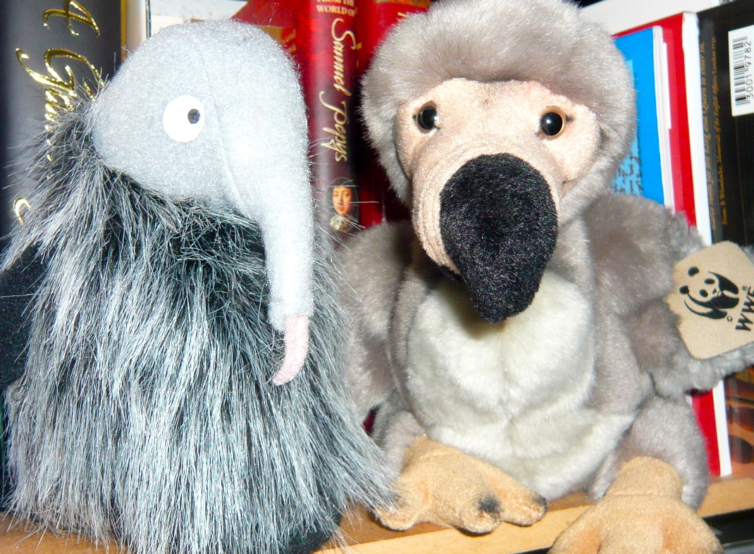 Dodo and Eck