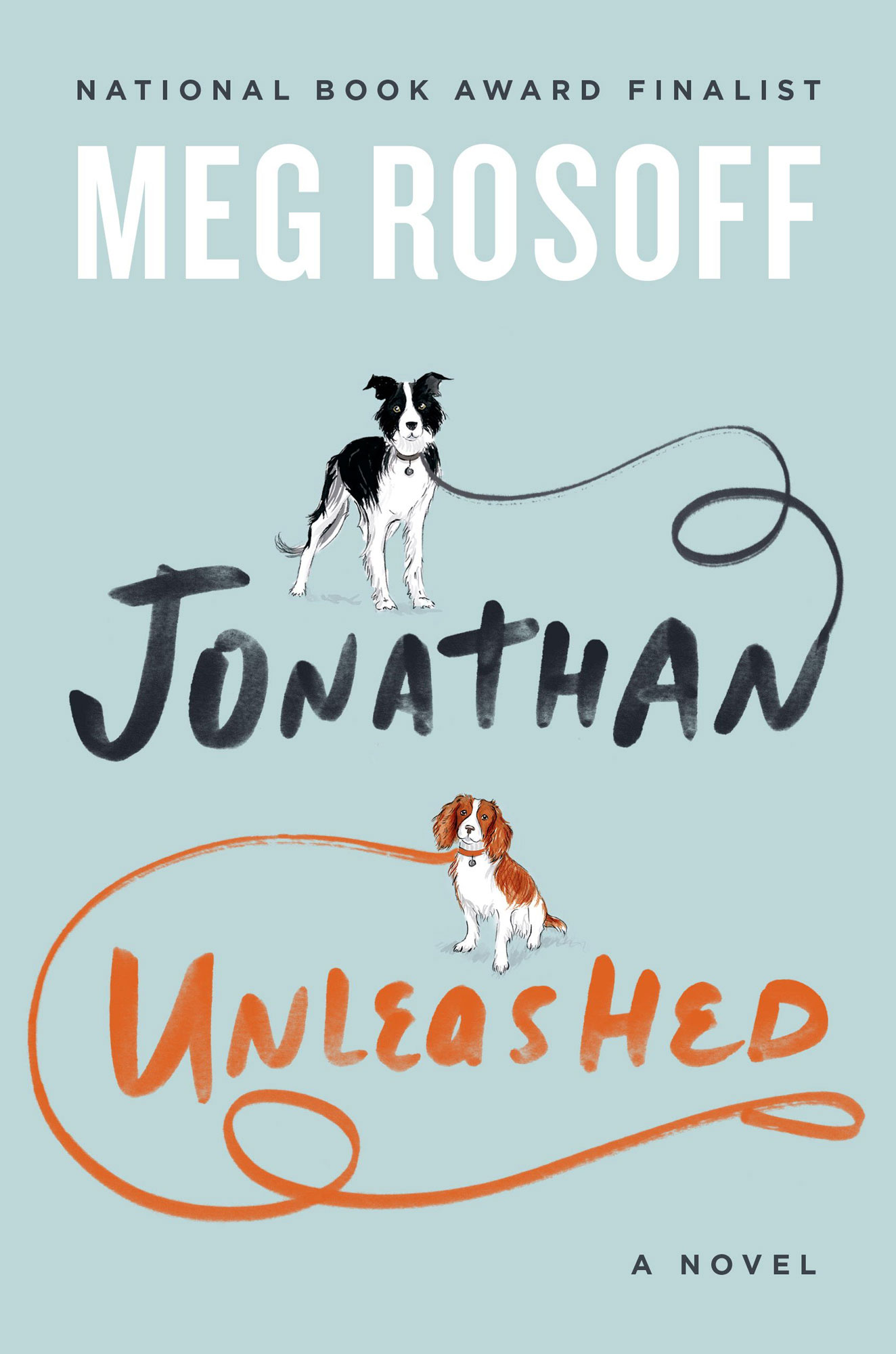 Meg-Rosoff---Jonathan-Unleashed-02.book-award.jpg