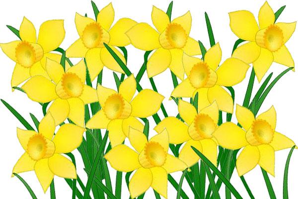 march-news-2009-daffodil-clipart-daffodil-day-4.jpg