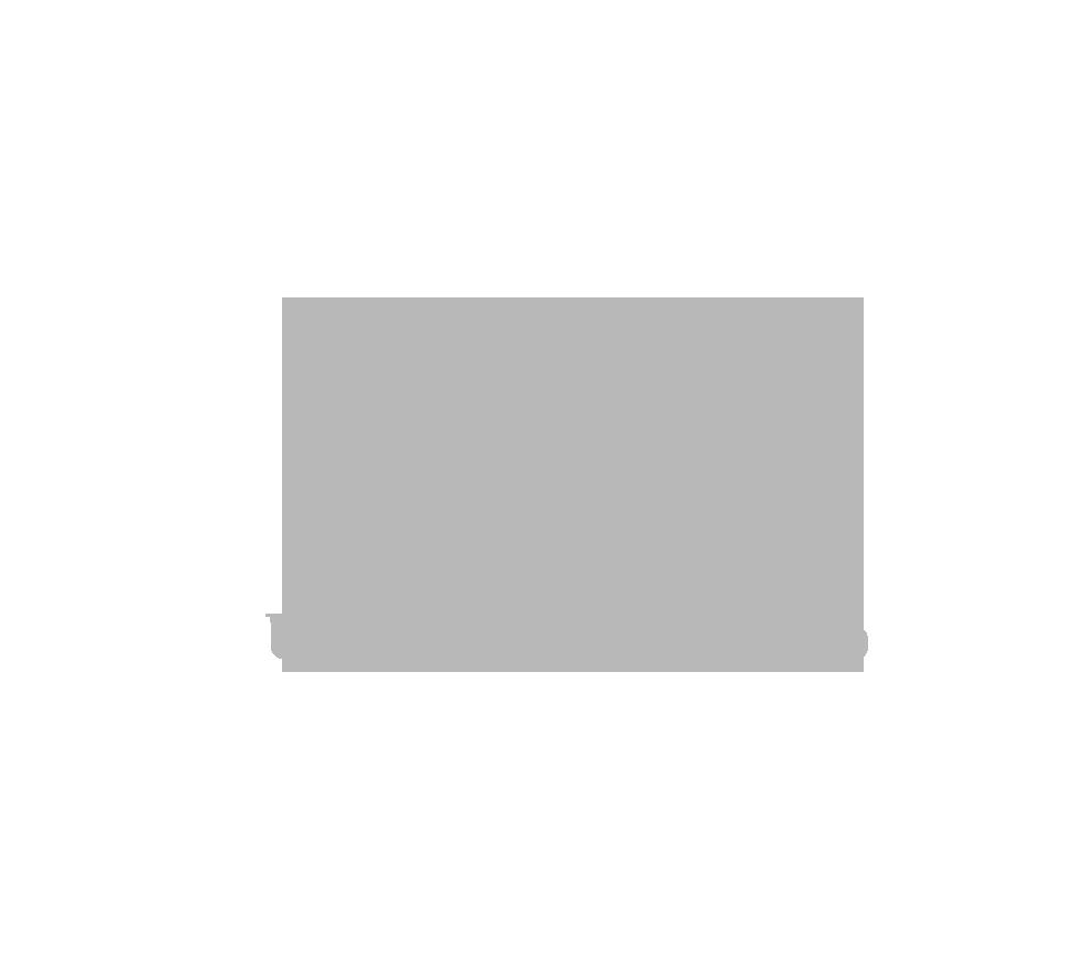 UAA logo .png