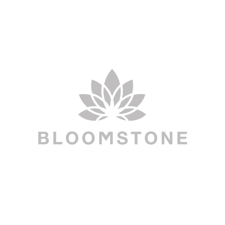 Bllomstone logo grey.jpg