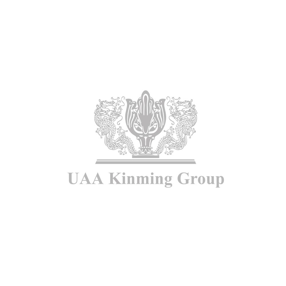 Uaa Logo grey.jpg