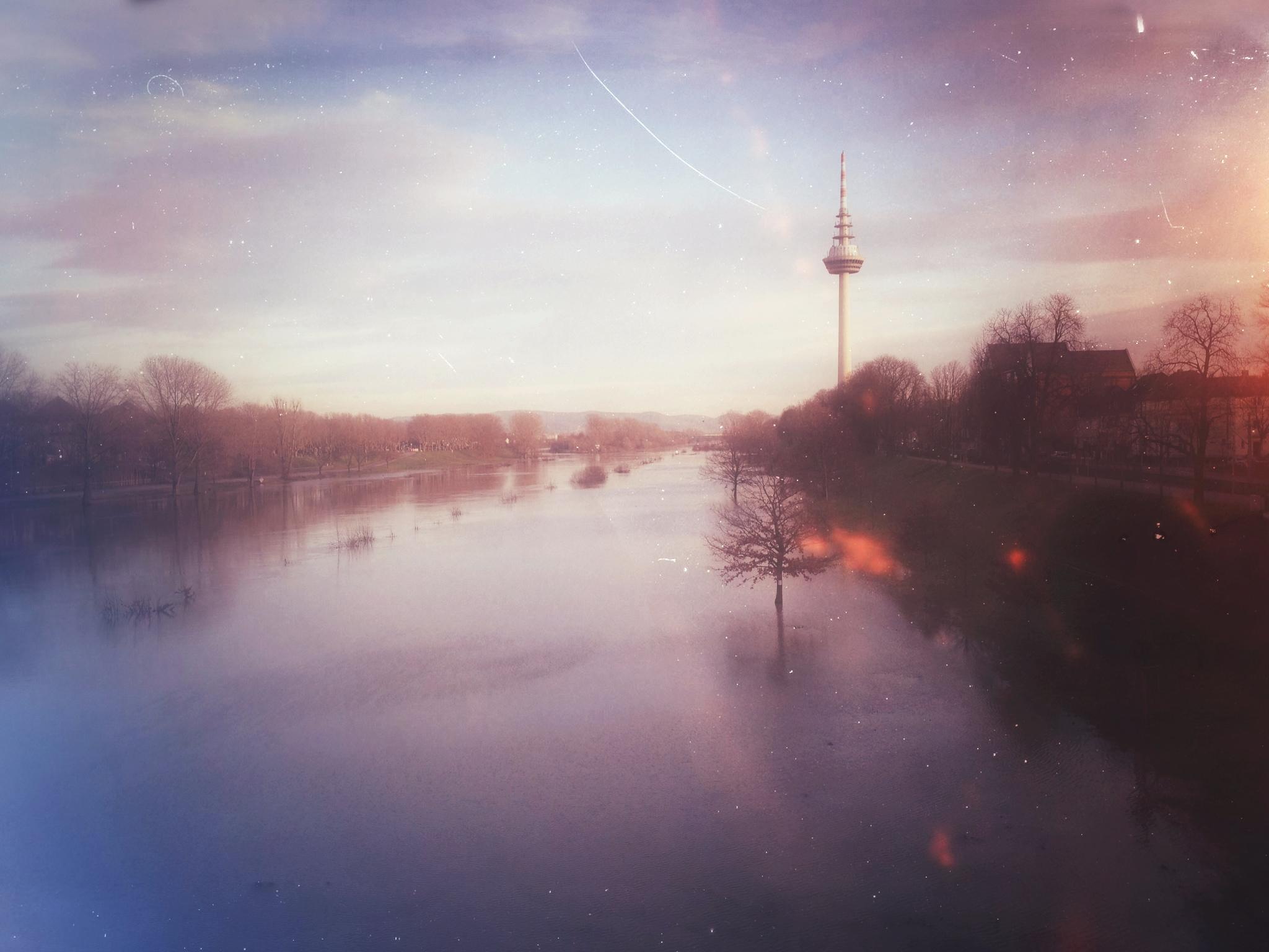 Mannheim-in-2012.jpg