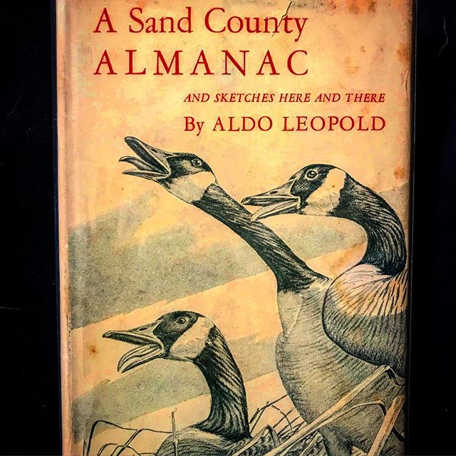 One of the great nature writers of the 20th c., Aldo Leopold, was born #onthisday (Jan. 11) in 1887 (and was a fellow @lvillealumni ) #aldoleopold #wilderness #americancanopy #asandcountyalmanac @lvilleschool